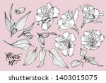 vector collection of hand drawn ... | Shutterstock .eps vector #1403015075