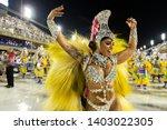 rio  brazil   march 01  2019 ... | Shutterstock . vector #1403022305