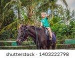 boy horseback riding ... | Shutterstock . vector #1403222798