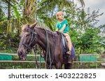 boy horseback riding ... | Shutterstock . vector #1403222825