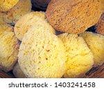 Natural Sea Sponges For...