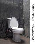 toilet bowl for men and women | Shutterstock . vector #1403283002