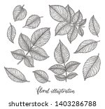 rose flower leaves set hand... | Shutterstock .eps vector #1403286788
