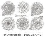 rose flowers set hand drawn in... | Shutterstock .eps vector #1403287742