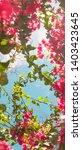 floral background  spring...   Shutterstock . vector #1403423645