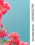 floral background  spring...   Shutterstock . vector #1403423795