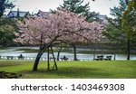 cherry trees and flowers in...   Shutterstock . vector #1403469308