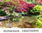 bellagio city on lake como ...   Shutterstock . vector #1403703995