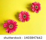 three flowers of crimson... | Shutterstock . vector #1403847662