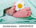 baby feet concept care delicate ... | Shutterstock . vector #1404394925