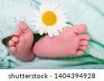 baby feet concept care delicate ... | Shutterstock . vector #1404394928
