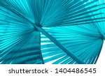 Tropical Palm Leaf  Abstract...