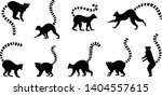 Various Lemur Silhouette On Th...