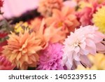 beautiful colorful flowers... | Shutterstock . vector #1405239515