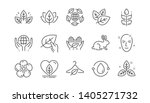 organic cosmetics line icons.... | Shutterstock .eps vector #1405271732