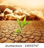 Green Plant Growing Trough Dea...