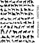 Stock vector one hundred silhouettes of different breeds of dogs 14057581