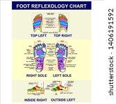 foot reflexology chart  poster... | Shutterstock .eps vector #1406191592