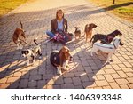 Stock photo smiling girl walker in the park with dogs 1406393348