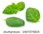 fresh basil isolated on white...   Shutterstock . vector #1407374825