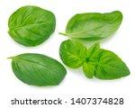 fresh basil isolated on white...   Shutterstock . vector #1407374828