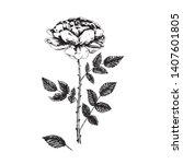 rose flower  stem with thorns ...   Shutterstock .eps vector #1407601805