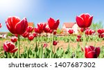 amazing view of colorful red... | Shutterstock . vector #1407687302
