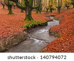 The Falling Leaves Colors The...