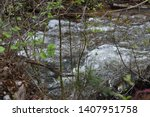 beautiful river out of lambs... | Shutterstock . vector #1407951758