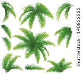 set green branches with leaves...   Shutterstock .eps vector #140823232