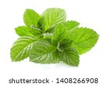 mint leaves on white background | Shutterstock . vector #1408266908