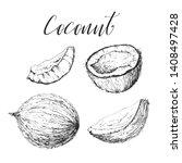 coconut hand drawn sketch.... | Shutterstock .eps vector #1408497428