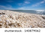 Shark Bay   Shell Beach ...