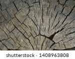 texture of old dry wood closeup.... | Shutterstock . vector #1408963808