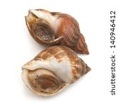 Uncooked Fresh Common Whelks Or ...