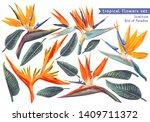 vector tropical set of... | Shutterstock .eps vector #1409711372