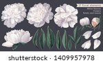 set of floral elements with... | Shutterstock .eps vector #1409957978