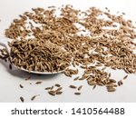 carum carvi  also known as... | Shutterstock . vector #1410564488