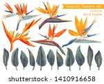 vector set of strelitzia...   Shutterstock .eps vector #1410916658