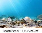 sunbeams underwater rocks and... | Shutterstock . vector #1410926225