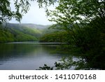 In The Luscious Green Hills An...