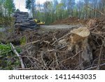 machinery clearing the trees to ... | Shutterstock . vector #1411443035