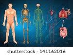 illustration of various human... | Shutterstock .eps vector #141162016