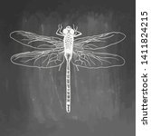 Dragonfly. Beauty Insect. Hand...