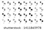 animals footprints. animal feet ... | Shutterstock .eps vector #1411865978