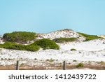 Gulf Of Mexico Sand Dunes At...