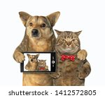 Stock photo the dog with a smartphone and cat in a red bow tie made selfie together white background isolated 1412572805
