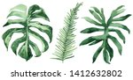 set of tropical leaves. jungle  ... | Shutterstock . vector #1412632802