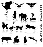 a pug,background,birds,black,body,cartoon,cat,crane,design,dog,dolphins,eagles,ears,elephants,eps 10