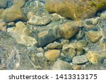 seabed close up. large round... | Shutterstock . vector #1413313175